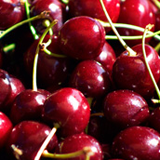 ciliegia giorgia durone