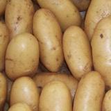 patata spunta