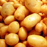 patata nicola