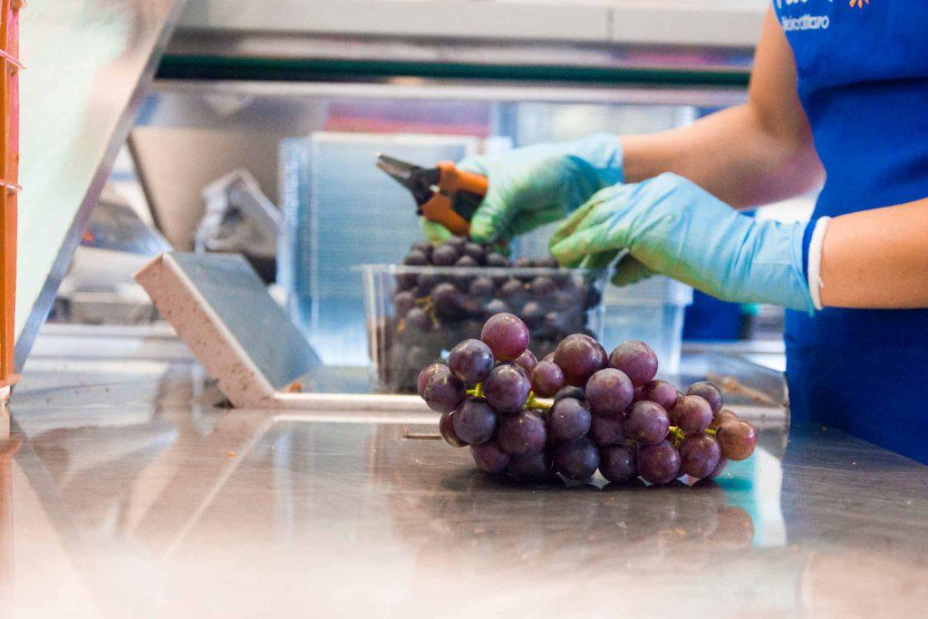 aziende di produzione ed export di prodotti ortofrutticoli tipici della Puglia 03