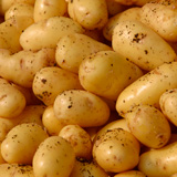 sieglinde patata