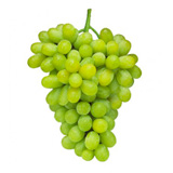 uva thompson seedless