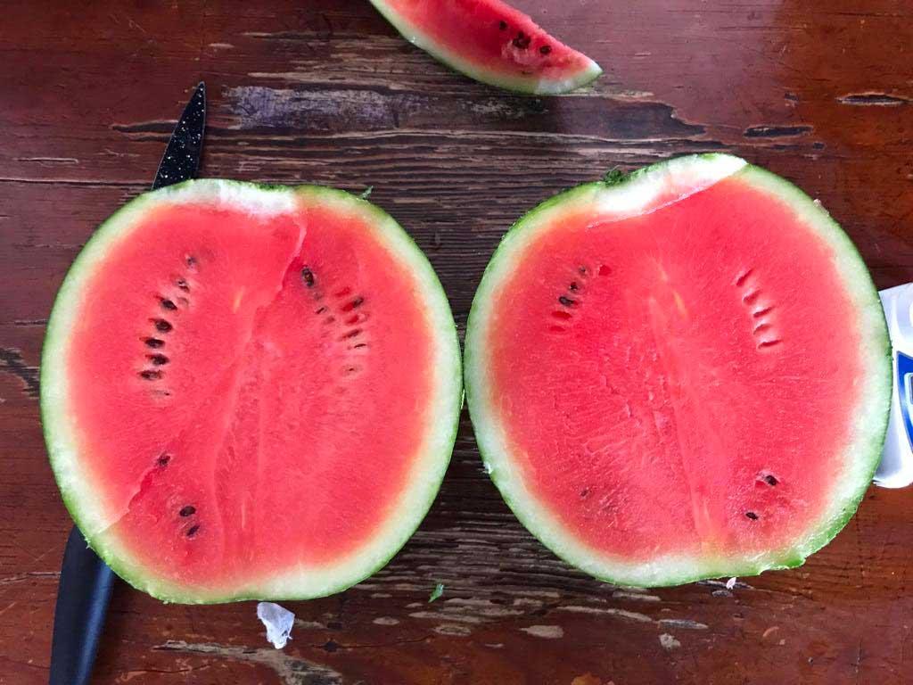 La stagione delle Angurie - Frudis